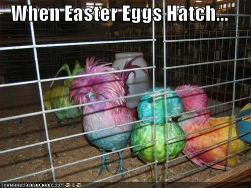 funny-pictures-adult-humor-easter-i5