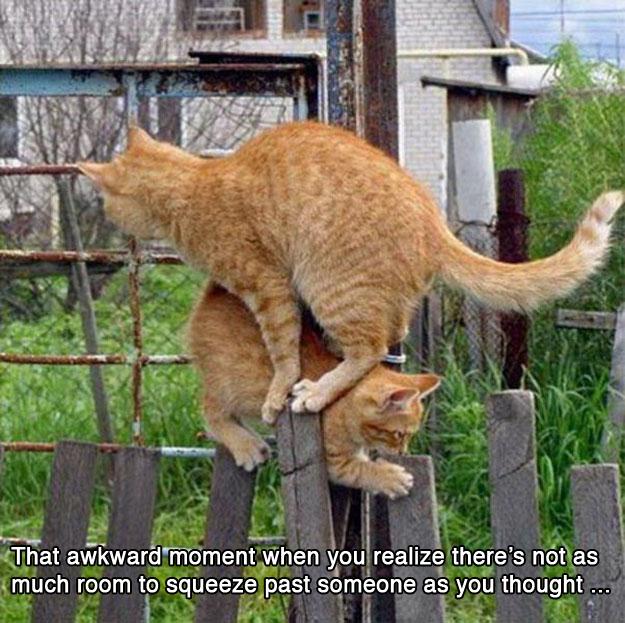 awkward_moments_4