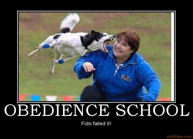 obedience-school-humor-funny-sex-texas-boner-obama-demotivational-poster-1210956625