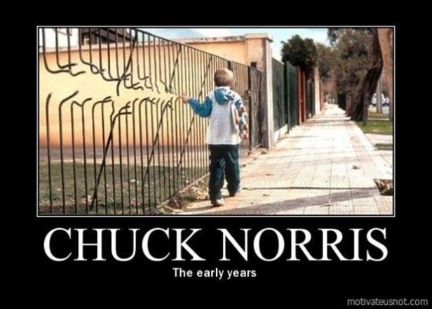 demotivational posters, chuck norris - Dump A Day