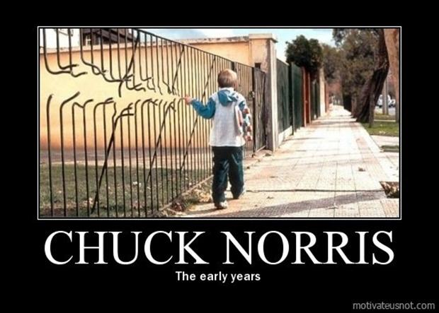 demotivational posters, chuck norris - Dump A Day