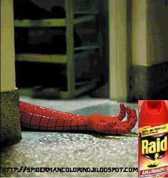 funny-spiderman-6