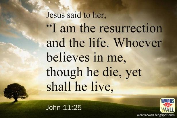 john-11-25-free-bible-verse-desktop-wallpapers